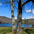 Hometown Series -sherando Lake by Arlane Crump
