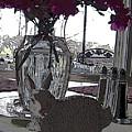 Honey Bunny by Shirley Sykes Bracken