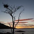 Honeymoon Bay - Tasmania by Robert Jenner