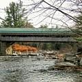 Honeymoon Covered Bridge by Wayne Toutaint
