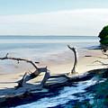 Honeymoon Island by Sam Davis Johnson