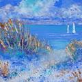Honeymoon Island by Shirley Weidenhamer