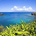 Honolua Bay by Ron Dahlquist - Printscapes
