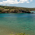 Honolua Bay by Susan Rissi Tregoning