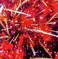Honolulu Fireworks by D Davila