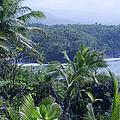 Honomaele Near Mokulehua At Hale O Piilani Heiau Hana Maui Hawaii by Sharon Mau