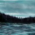 Hood Canal Puget Sound by Becky Herrera