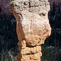 Hoodoo In Bryce Canyon by Louise Heusinkveld