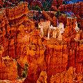 Hoodoos Bryce Canyon by James BO  Insogna