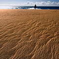 Ho'okahi - A Stroll Along A Beach by Nature  Photographer