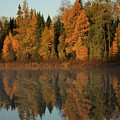 Hooker Lake Reflections by Joi Electa