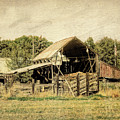 Hooper Hay Shed by David King