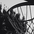 Hoops by Sydney Mark
