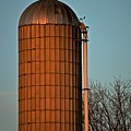 Hoover Pumps Atop Silo by Tana Reiff