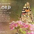 Hope In The Lord by Karen Beasley