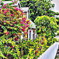 Hopetown Gardens by Anthony C Chen