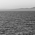 Horizon Grayscale by Fei A