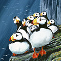 Horned Puffins At Rest by Bob Patterson