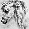 Arabian Horse 1 By Diana Van by Diana Van