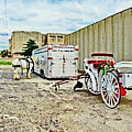 Horse And Buggie by Don Baker