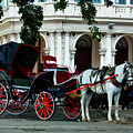Horse And Buggy In Havana by Mountain Dreams