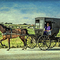 Horse And Buggy by Lynn Sprowl