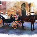 Horse And Carriage by Anthony Dezenzio