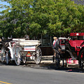 Horse And Carriage Ride by Rod Jellison
