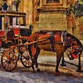 Horse And Coach, M'dina, Malta by Leigh Kemp