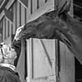Horse And Man by Ellen Berrahmoun