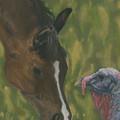 Horse And Turkey by Lara Kittelson