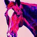 Horse Art Horse Portrait Maduro Deep Pink by Bets Klieger