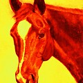 Horse Art Horse Portrait Maduro Deep Yellow And Orange by Bets Klieger