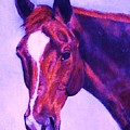 Horse Art Horse Portrait Maduro Pink And Purple by Bets Klieger