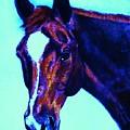 Horse Art Horse Portrait Maduro Striking Purple by Bets Klieger