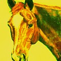 Horse Art Horse Portrait Maduro Yellow by Bets Klieger