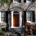 Horse Carriage In Charleston by Susanne Van Hulst