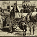 Horse Drawn Carriage by David Patterson