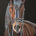 Horse by Eli Marinova