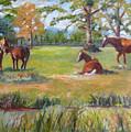 Horse Farm In Georgia by Gloria Smith