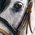 Horse Head by Nadi Spencer