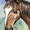 Horse In Love by Alban Dizdari