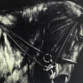 Horse In The Dark II by Bayland Collection