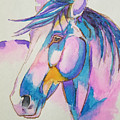 Horse In Pink  by Johnny McNabb