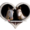 Horse Lovers by Gravityx9  Designs