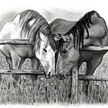 Horse Lovers by Joyce Geleynse