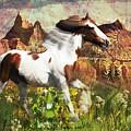 Horse Medicine 2015 by Kathryn Strick