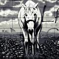 Horse On The Brick Wall - Graffiti by Daliana Pacuraru