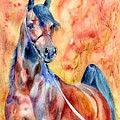 Horse On The Orange Background by Suzann Sines