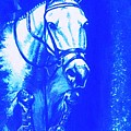 Horse Painting Jumper No Faults Aquamarine by Bets Klieger